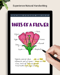 Noteshelf — Take Notes | Handwriting | PDF Markup 4.7 (Paid) (x86)