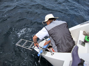 Photo: The first and most critical board is in place with Stein standing in the hole. Several cracks were apparent in addition to the big hole - one can be seen around the step. The whole section of steps was pushed in and displaced about 2 cm towards the middle of the boat causing the rudder to be misaligned. (Top of the rudder stock is below the metal fitting in the step with the crack.)