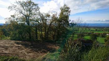 terrain à Bellegarde-en-Forez (42)