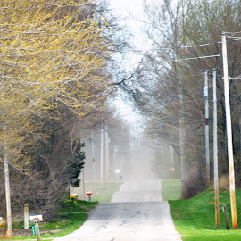 fog on a brite day by Michael Collier - Transportation Roads (  )