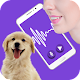 Download Dog Translator 2020: Dog to Human [Prank] For PC Windows and Mac
