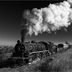 by Francois Retief - Black & White Landscapes
