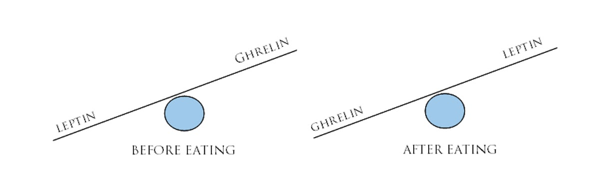 Ορμόνες και Αδυνάτισμα: Η αναλογία λεπτίνης και Γκρελίνης πριν και μετά το φαγητό