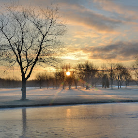 Chilly morning by Thomas Fitzrandolph - Landscapes Sunsets & Sunrises ( winter, sky, ice, snow, niagara county ny, trees, nikon d5200, sunrise, lockport ny, sun )