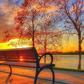 Sunset at the River by Lorna Littrell - Instagram & Mobile iPhone ( orange, bench, sunset, orange and blue, autumn, iphone )
