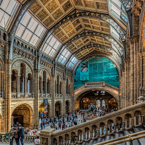 by Chris Williams - Buildings & Architecture Public & Historical