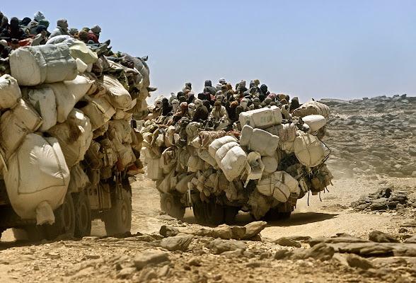 """Dalla Libia al Mali sulle """"navi del deserto"""" di Alexx70"""