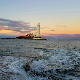 St Mary's lighthouse  by Kathleen Brady - Landscapes Sunsets & Sunrises (  )
