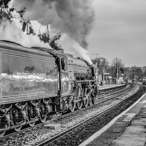 THE SULIS AND SARUM EXPRESS - TORNADO by Andro Andrejevic - Transportation Trains ( mainline steam, loco 60163, locomotive, steam train, steam preservation, lner, lner peppercorn class a1 )