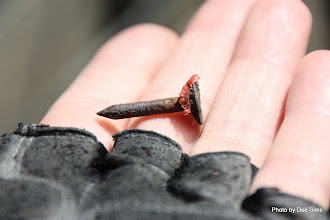 Photo: (Year 2) Day 347 - The Tack Puncture Culprit