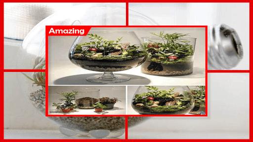 1000+ DIY Terrarium Miniature Ideas 4.1 screenshots 6