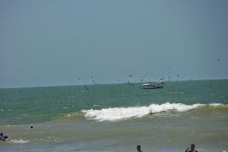 Photo: Praia do Açu Janeiro 2014