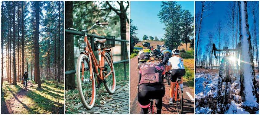 Vilken cyklist är du?
