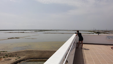 Photo: View across salt lagoons from Tancada observation tower