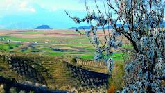 Este paisaje contrasta con otros más áridos, como el del Desierto de Tabernas.
