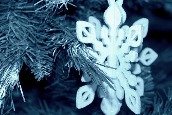 Snow di cla_bu