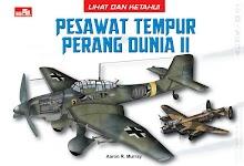 """Lihat dan Ketahui: Pesawat Tempur Perang Dunia II - Aaron R. Murray"""