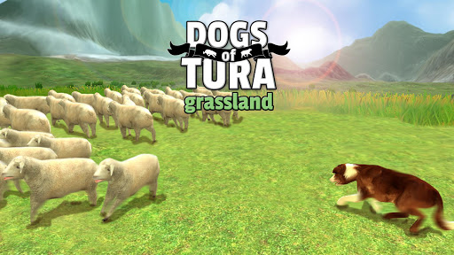 DOGS of TURA no ads