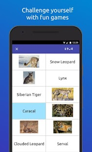 Memorang: Flashcards & Quizzes- screenshot thumbnail