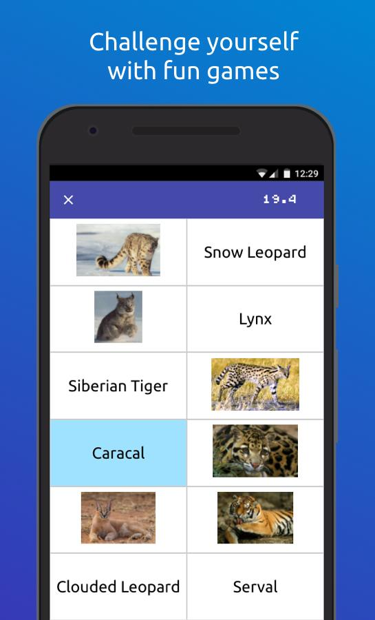 Memorang: Flashcards & Quizzes- screenshot