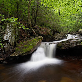 Aaron's Cascade by Tim Devine - Landscapes Waterscapes ( falls trail, stream, luzerne county, waterfalls, kitchen creek, creek, waterfall, glen leigh, endless mountains, pennsylvania, appalachian mountains, ricketts glen state park )
