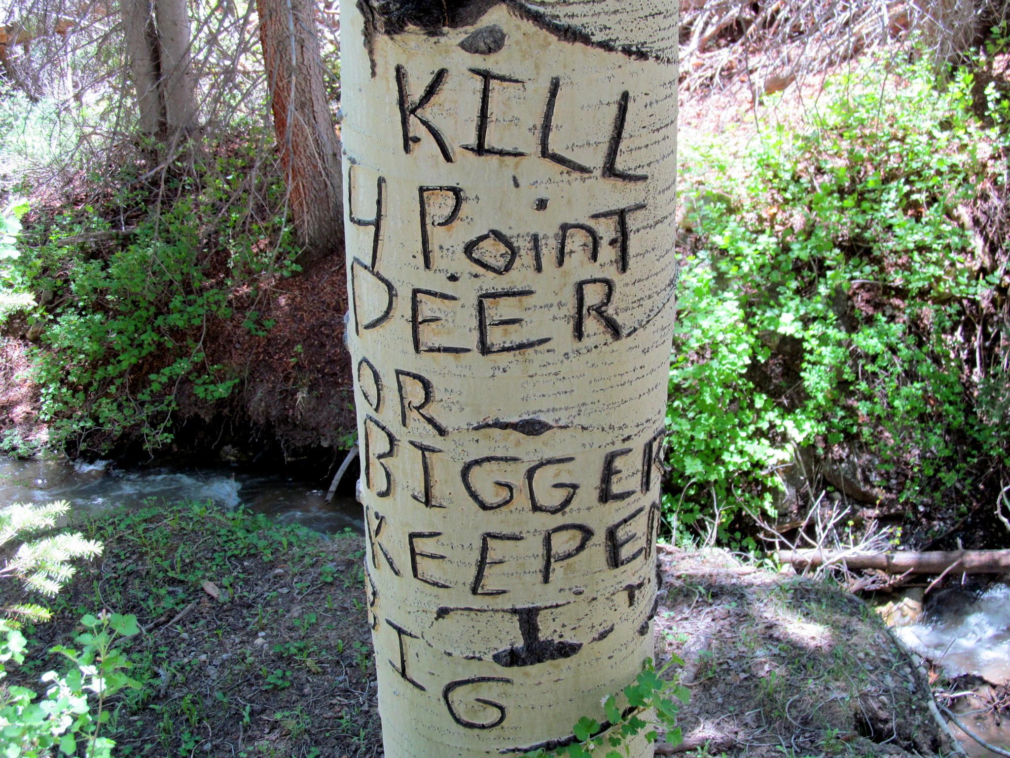 Photo: Kill 4 point deer or bigger, keepem big