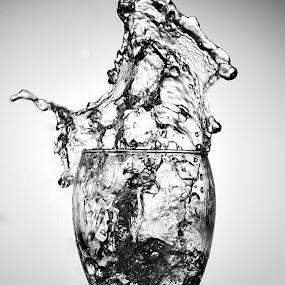 by Tiberiu Stefan  Simion - Black & White Objects & Still Life