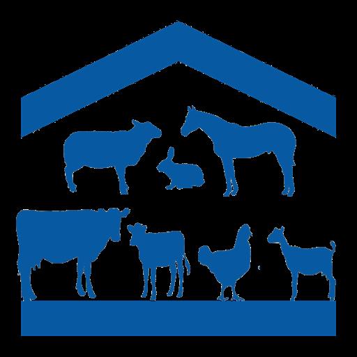 AP Livestock Sandy