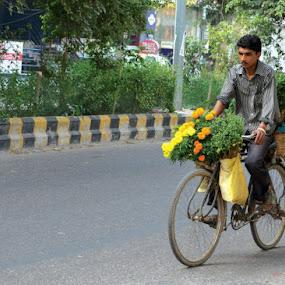 by Ravi Shankar - City,  Street & Park  Street Scenes