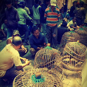 Pasar Ayam by Ayah Adit Qunyit - Professional People Business People