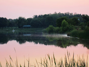 Photo: Mist rising from a lake in a pink sunset at Carriage Hill Metropark in Dayton, Ohio.