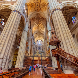 interior catedral salamanca by -. Phœnix .- - Buildings & Architecture Places of Worship ( salamanca, catedral,  )