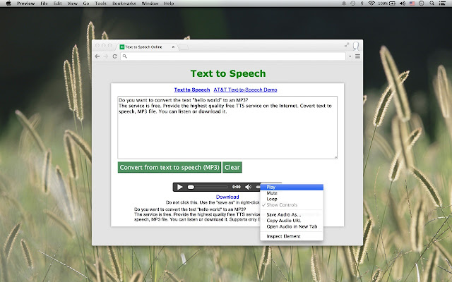 How to download the audio file? | imtranslator.