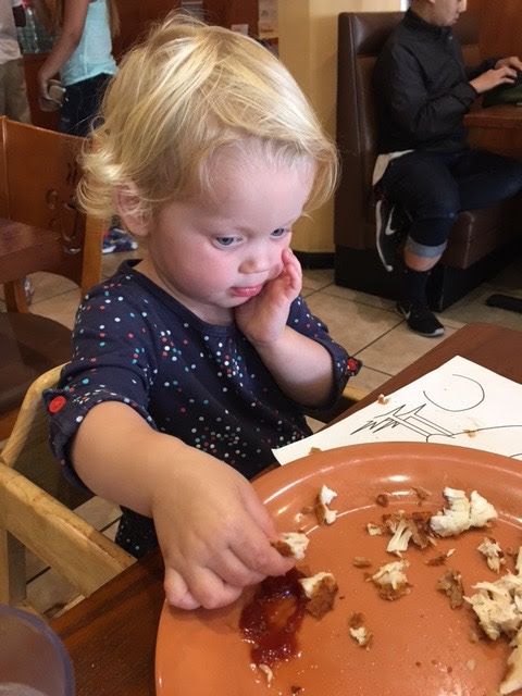 Toddler girl looking at plate of chicken