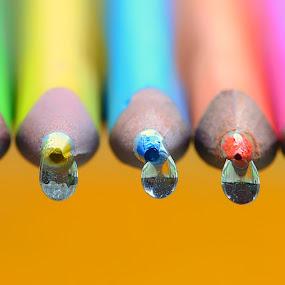 by Nizam Akanjee - Artistic Objects Education Objects (  )