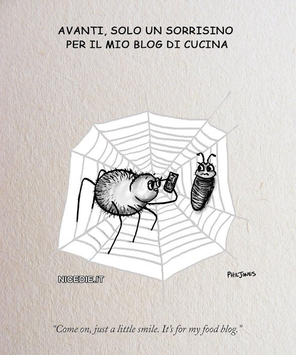un ragno ha catturato la sua preda tira fuori il cellulare: andiamo un sorrisino per il mio blog di cucina
