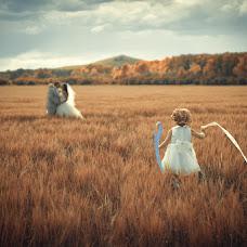 Wedding photographer Vladimir Kolesnikov (Photovk). Photo of 02.12.2013