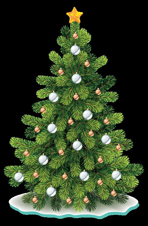 Christmas Tree TZynB7sskWnqe5dsw5Sm