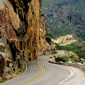 Road to Sequoia National Park by Eleazar Valdez - Uncategorized All Uncategorized ( national park, mountains, green, rocks, road, cali, park )