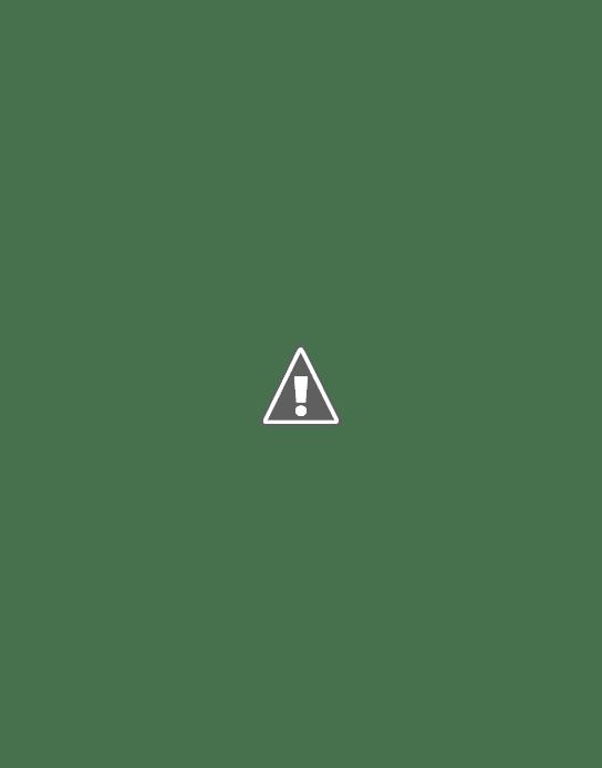 Acoustic guitar Aria-101