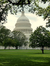 Photo: The Capitol from far.