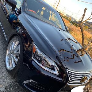 LS UVF46 平成24年式 LS600hlの洗車のカスタム事例画像 たけさんさんの2019年01月21日16:16の投稿