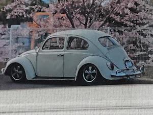 ビートル  1964年式のカスタム事例画像 もんすたーさんの2020年04月18日23:54の投稿