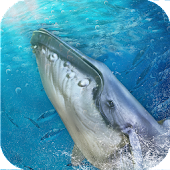 Blue Whale Game: Save fish from angry shark