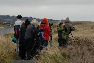 Photo: Bird-Watchers