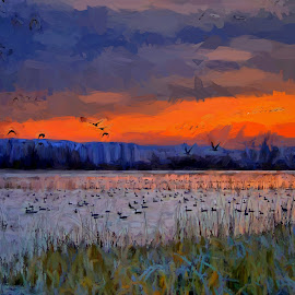 Early morning at the marsh by Gaylord Mink - Digital Art Places ( sunrises, birds, water, landscape, maarsh )