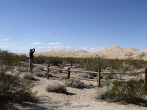 Photo: The Kelso Dunes trailhead. V pauses for some pictures.