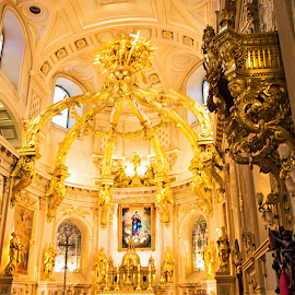 Quebec Cathedral by Will McNamee - Buildings & Architecture Places of Worship ( dbcambron@aol.com, esco8930@yahoo.com, aundriam@me.com, patty_j_ball@hotmail.com, parkerconstco@hotmail.com,  )
