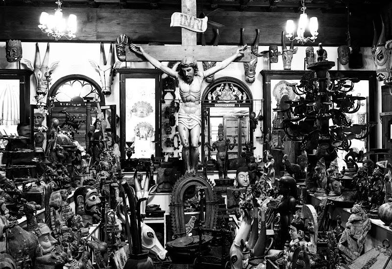 Religioni di francesco|gallorini
