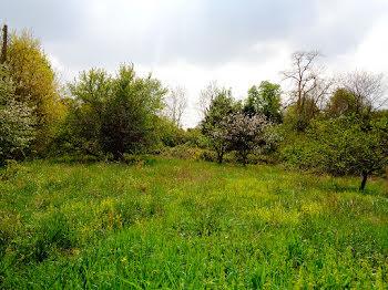 terrain à Montfort-en-Chalosse (40)
